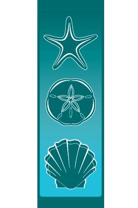 Seashells - Kalamazoo Banner Works